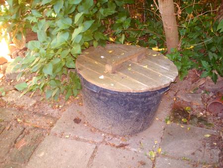 Wie Kann Man Wuhlmause Langfristig Vertreiben Gartenbob De Der