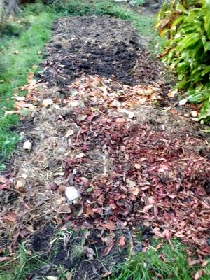 Gartenabfälle im Herbst auf das Beet