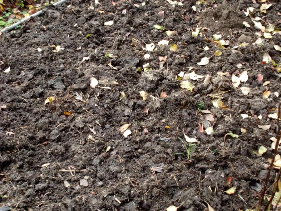 Boden auflockern