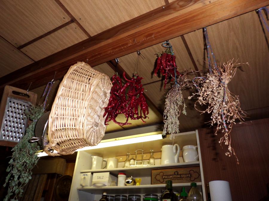 Pflanzen Paprika, Chili und Peperoni