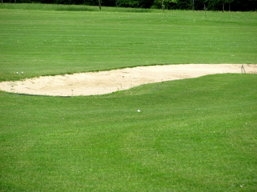 Wie wäre es mit einem Golfrasen im Garten?
