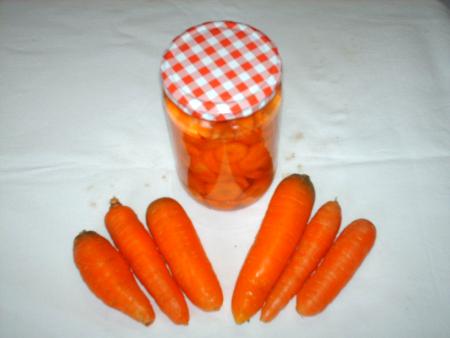 Möhren,Karotten Krankheiten