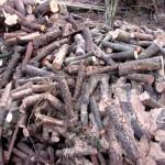 Brennholz leicht gemacht