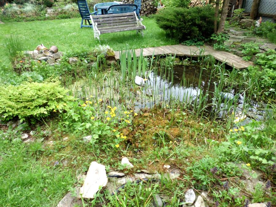 Ein Gemütlicher Garten