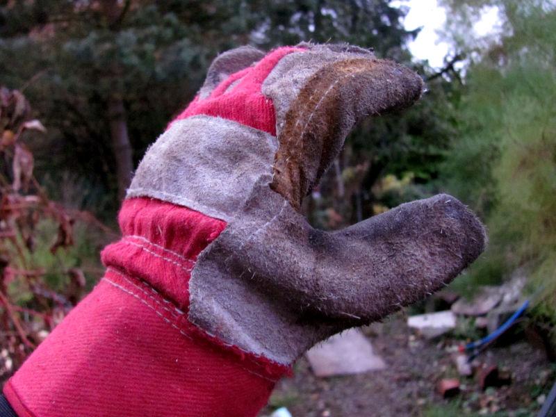 Es macht einen großen Unterschied, ob man sich mit der Rosenschere in den Finger schneidet oder nur in den Gartenhandschuh.