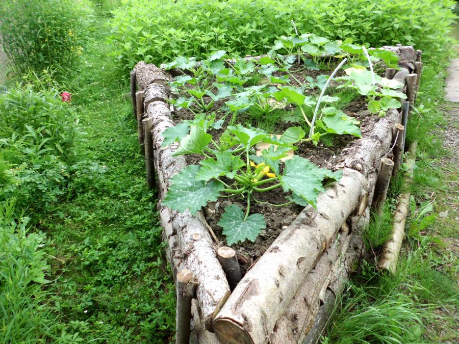 Ein Hochbeet erleichtert die Gartenarbeit ungemein.