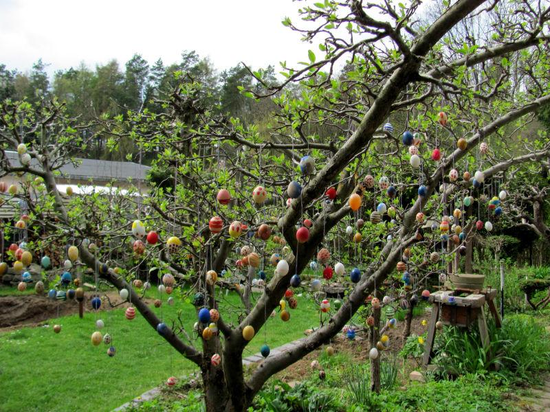 Osterbaum im Garten