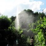Duschen wie im Regenwald