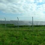 Biostrom im Garten