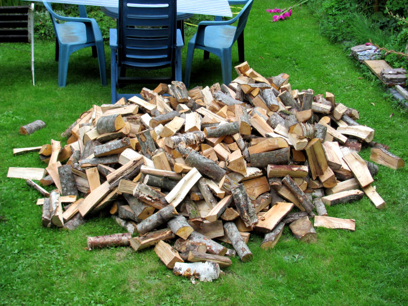 getrocknetes Brennholz nass