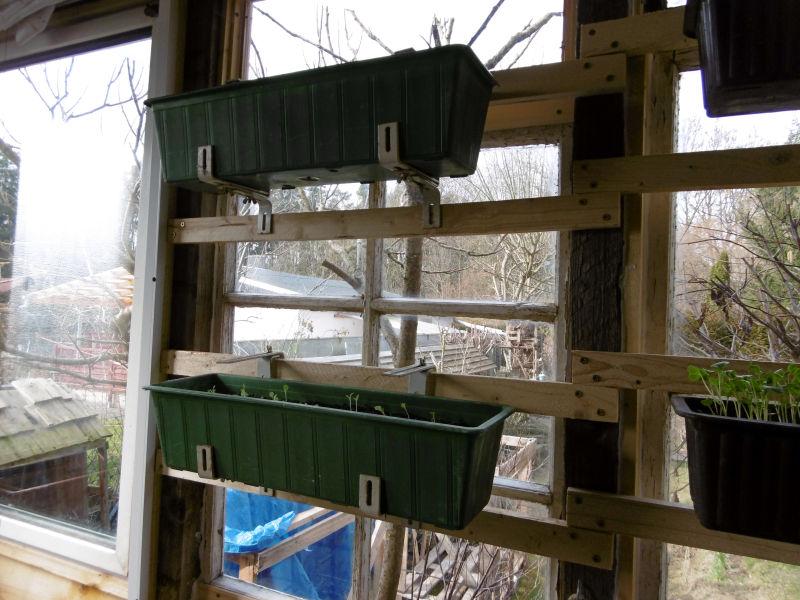 Blumenkästen einfach ins Fenster gehängt 2