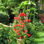 Blumenkübel aus Kunststoff