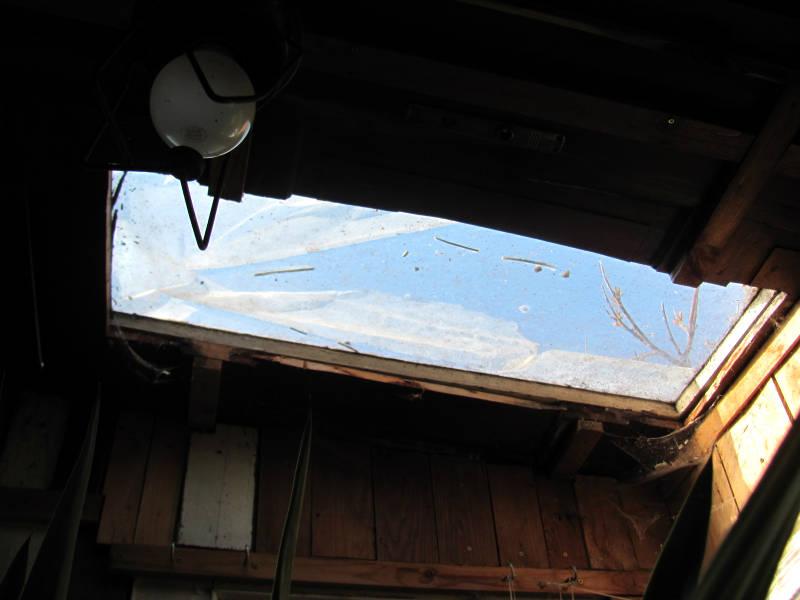 Gewächshaus Dach