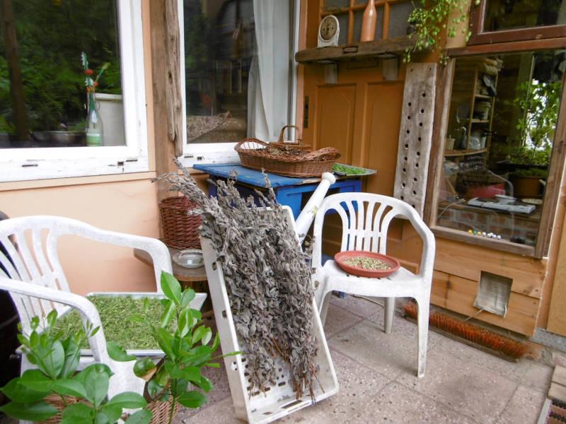 wie lange d rfen partyzelte und pavillons im kleingarten stehen bleiben der. Black Bedroom Furniture Sets. Home Design Ideas